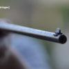 Schuss Gewehr