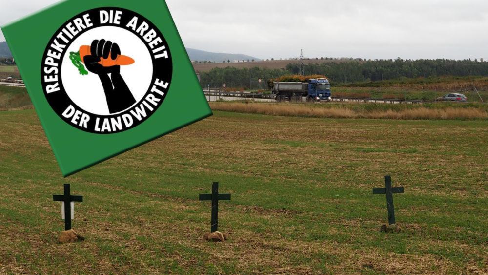 Grüne Kreuze Im Feld